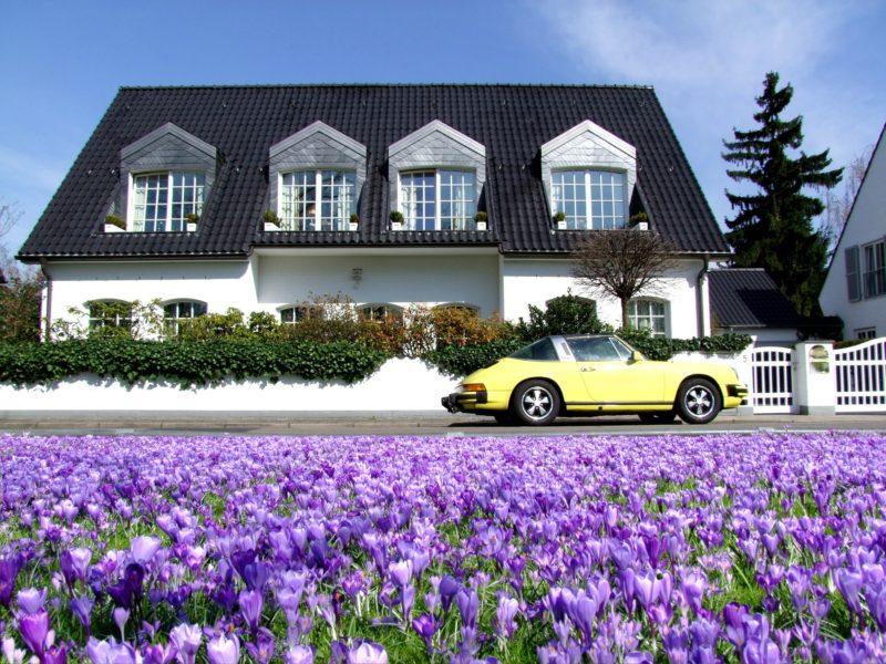 gelber Porsche 911 parkt vor einer Villa. Im Vordergrund lila Krokusse.