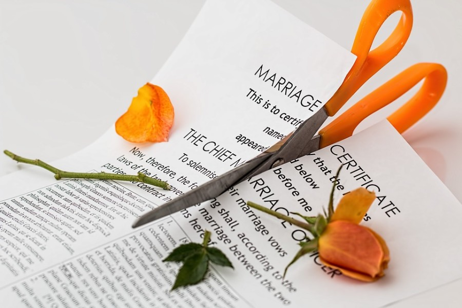 Heiratsurkunde und orange Rose zerschnitten von einer Schere